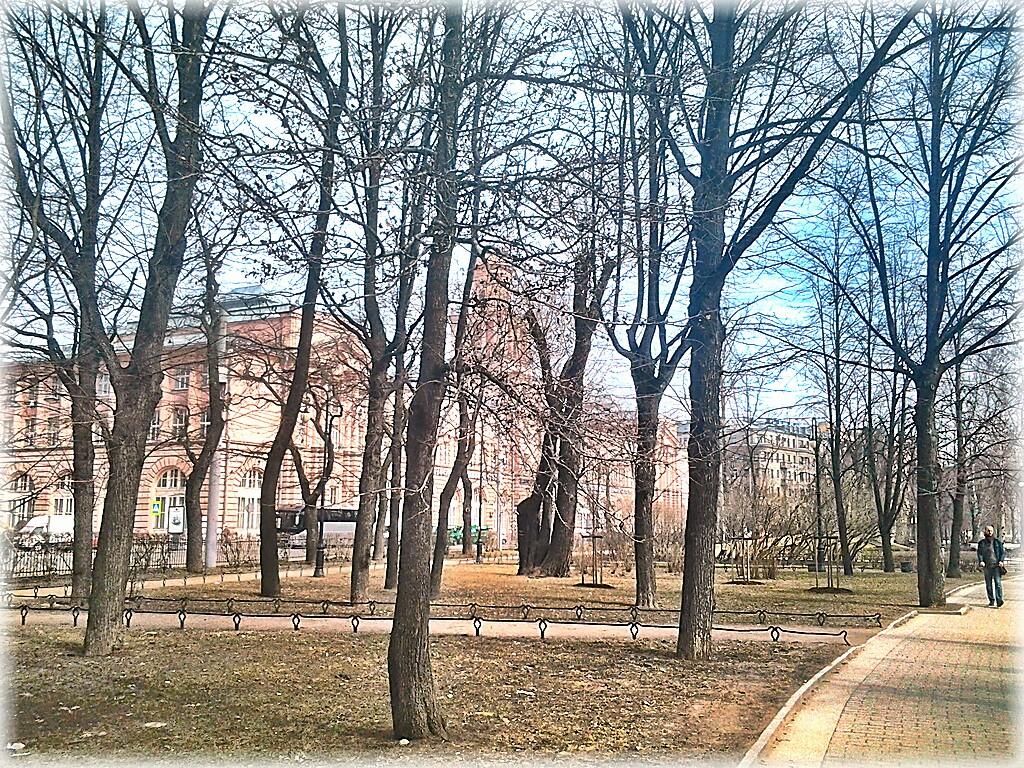 Деревья и справа дорожка